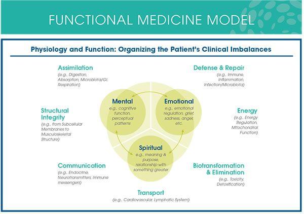 functional-medicine-model